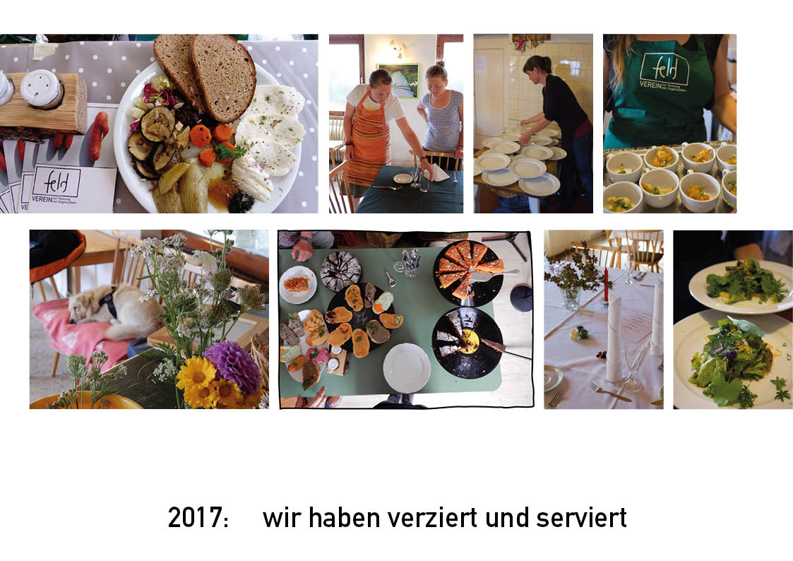feld 2017web6