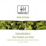 feld-schuleEX02-NMS-web