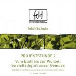 feld-schulePS02-NMS-web